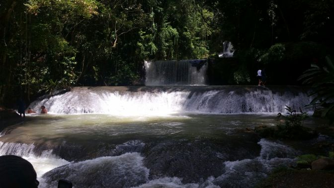 Dive Into The New Year With A Visit To YS Falls