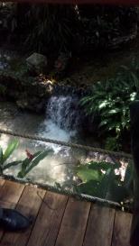 The river flowing through the garden